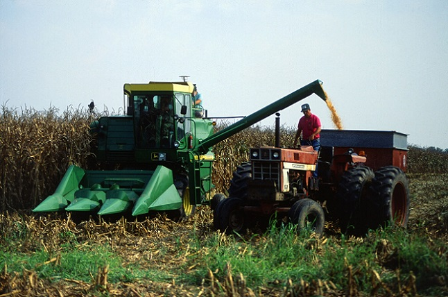 corn-harvest-1502651946axA