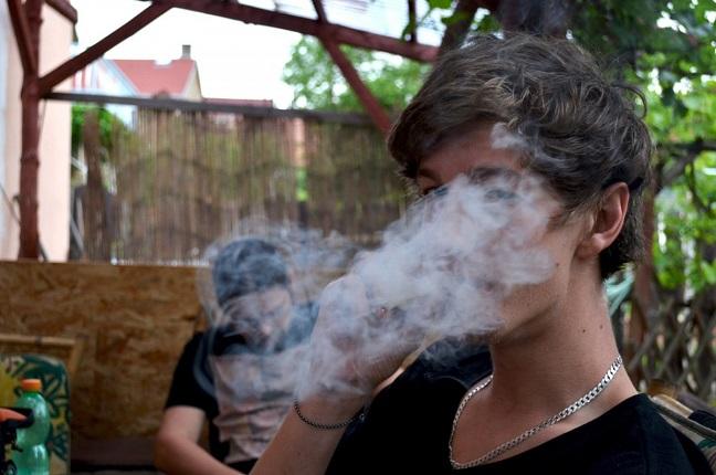 weed_smoke_drug_marijuana_joint_ganja_grass_marihuana-711329