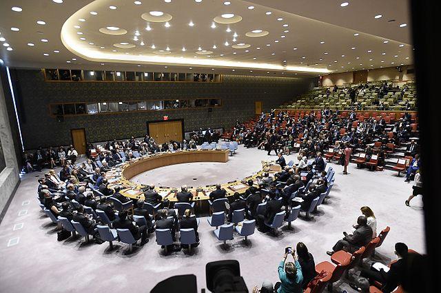 Jefa_de_Estado_participa_en_reunión_del_Consejo_de_Seguridad_sobre_el_Acuerdo_Final_de_Paz_entre_el_Gobierno_Colombiano_y_las_FARC-EP_(29210038793) (1)