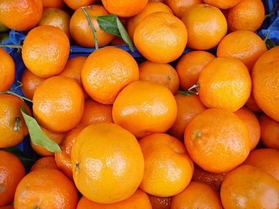 oranges_food_fruit_vitamins_citrus_fruit_fruits_fruity_tropical-1159647